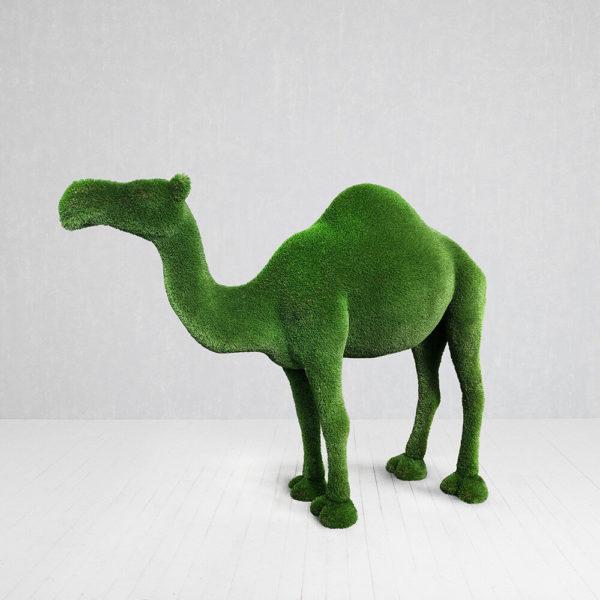 dromedar-xxl-gartenfigur-topiary-gfk-kunstrasen-dora_3