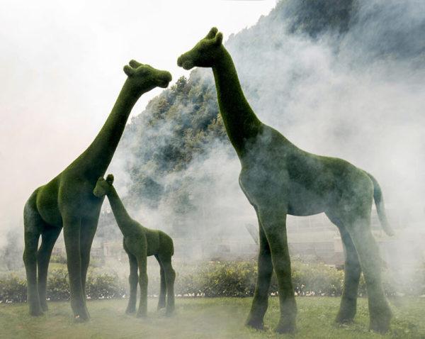 xxl-gartenskulptur-giraffe-lebensgross-topiary-gruen-gustav_9